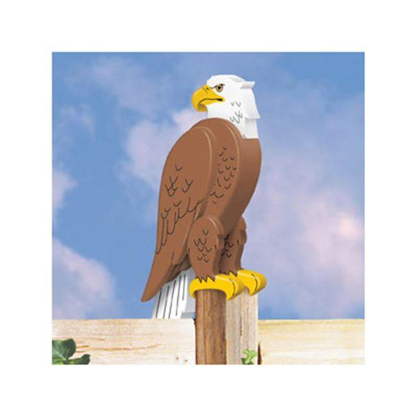 Bald Eagle 3D Project