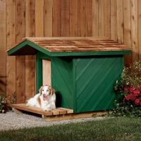 Woodworking Project Paper Plan to Build Dog House