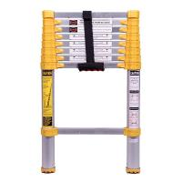 Xtend and Climb Home Series 750p Telescoping Ladder