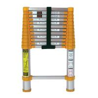 Xtend and Climb Home Series 770p Telescoping Ladder