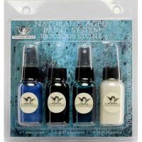 Tattered Angels Naturally Aged Faux Finish Paint Kit Turquoise