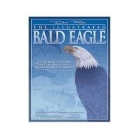Illustrated Bald Eagle the Ultimate Reference for Bird Lovers Woodcarv