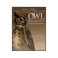Illustrated Owl - Barn Barred and Great Horned